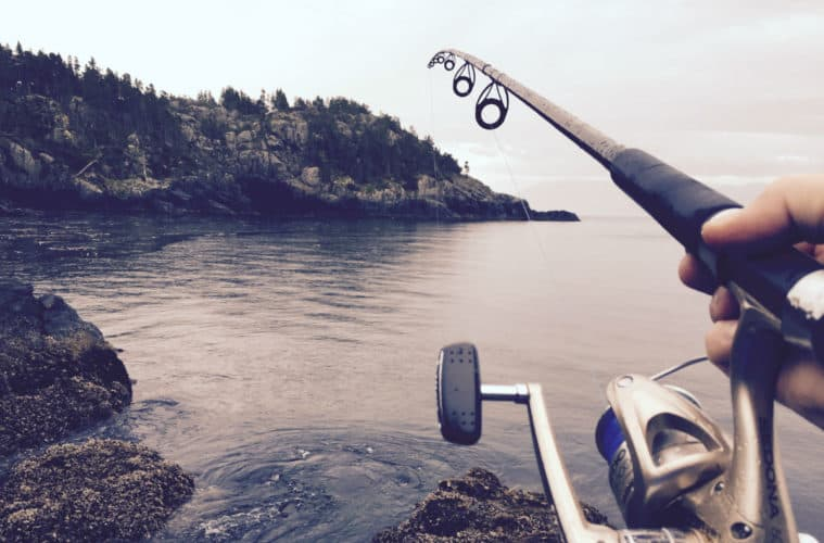 What are the best conditions to fish