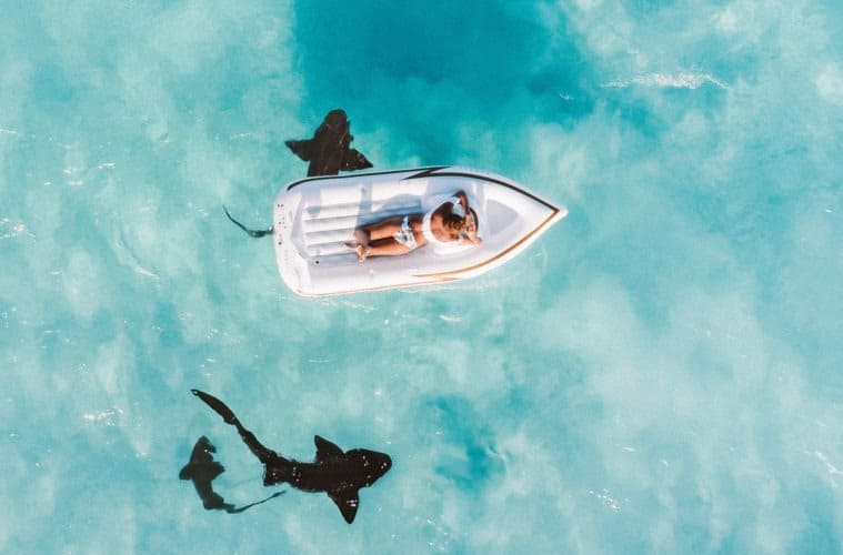 Most Dangerous Country by Shark Attack